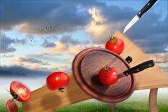 Taglio dei pomodori Immagine Stock