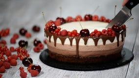 Taglio del cioccolato del dolce tre della mousse, decorato con le bacche archivi video