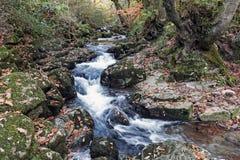 Taglio del fiume di Glenary attraverso le rocce Immagini Stock Libere da Diritti