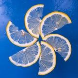 Taglio del limone Fotografia Stock