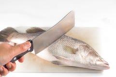 Taglio del pesce con un coltello sul tagliere. Fotografie Stock Libere da Diritti