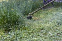 Taglio dell'erba Immagini Stock Libere da Diritti