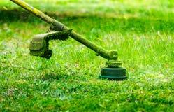 Taglio dell'erba nel giardino immagine stock