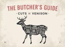 Taglio dell'insieme della carne Diagramma del macellaio del manifesto, schema - carne di cervo illustrazione di stock