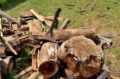 Taglio della legna da ardere Immagini Stock Libere da Diritti