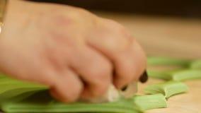 Taglio della pasta verde nei cerchi Khinkali di verde della preparazione con il salmone, gli spinaci, il formaggio e la crema stock footage