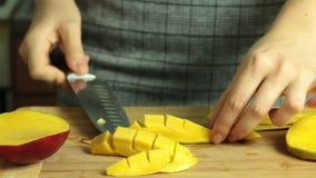 Taglio della ricetta del dolce del crêpe del mango video d archivio