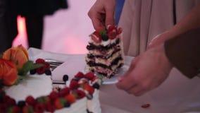Taglio della sposa e dello sposo del dolce di celebrazione di nozze stock footage