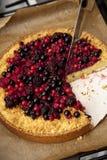 Taglio della torta casalinga con la frutta della foresta Immagine Stock Libera da Diritti