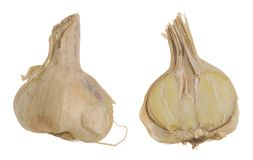 Taglio di allium sativum, dell'aglio ed intero isolati su fondo bianco Immagini Stock Libere da Diritti