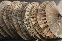 Taglio di foglia di palma della foglia tenuta in mano del fan Immagini Stock Libere da Diritti