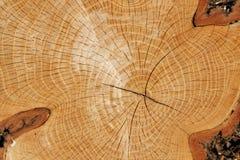 Taglio di legno Immagini Stock