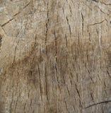 Taglio di legno da creare Fotografia Stock Libera da Diritti