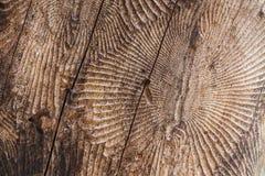 Taglio di legno della natura fotografie stock