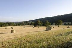 Taglio fresco Rolls di fieno nel campo occidentale Immagini Stock Libere da Diritti