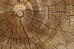 Taglio invecchiato di legno immagine stock