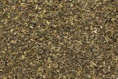 Taglio organico della bustina di tè del tè verde (camellia sinensis), permesso secco Fotografia Stock Libera da Diritti