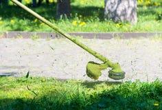 Taglio pazzo dell'erba nel parco immagine stock libera da diritti