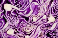 Taglio viola del cavolo. Fotografia Stock