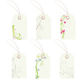 Tags. Assorted floral gift or sale tags Stock Photos