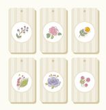 Tags, labels, flowers, plants, berries, striped, beige. Stock Photos
