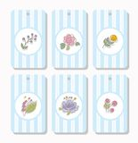 Tags, labels, flowers, plants, berries, striped, blue. Royalty Free Stock Photos