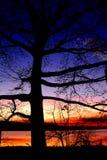 taguiguai λιμνών Στοκ εικόνες με δικαίωμα ελεύθερης χρήσης