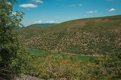 Tagus River running through a valley with hills covered by trees. In a sunny day at the Monfrague National Park. A remarkable place with a beautiful ridge and stock photo