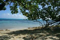 TAHA'A Eiland Polynesia Stock Foto's