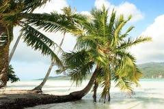 Tahaa Island. (next to Bora Bora) - Society Islands - French Polynesia - Southern Pacific Stock Photo
