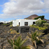 Tahiche, Lanzarote Royalty Free Stock Photography