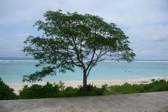 Tahiti Royalty Free Stock Photo