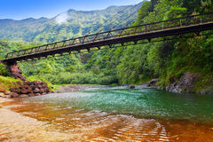 Tahiti. The bridge through the river in mountains. Stock Photo