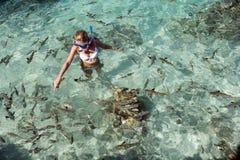 Tahiti - Franse Polynesia - Stille Zuidzee Royalty-vrije Stock Foto's