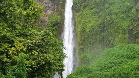 Rain and waterfall stock images