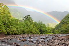 Tahiti. Mountain river and rainbow. Landscape in a sunny day Royalty Free Stock Photo