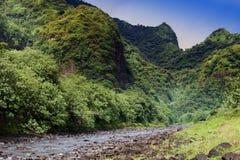 Tahiti.Tropical aard en bergrivier tegen de blauwe hemel Royalty-vrije Stock Foto's