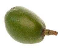 Tahitian Apple Isolated Stock Photos