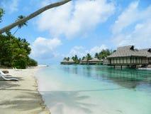 Tahitian Paradise Stock Image