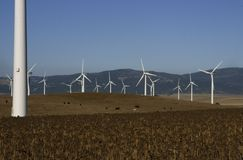 tahivilla windpark hiszpanii Obraz Royalty Free