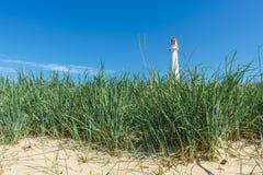 Tahkuna lighthouse through sedge grass royalty free stock photos