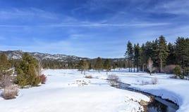 Tahoe冬天小河 免版税库存图片