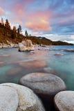 tahoe утеса озера ca bonsaie стоковое фото rf