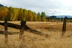 Tahoe royalty-vrije stock afbeeldingen