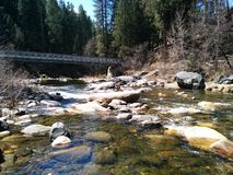 Tahoe creek in northern California Royalty Free Stock Photography