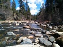 Tahoe creek in northern California Royalty Free Stock Photos