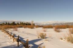 Tahoe-Küste Stockfoto