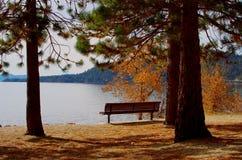 Tahoe Lake Bench royalty free stock photos