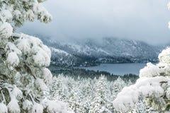 Tahoe śnieg Zdjęcia Royalty Free