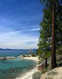 Tahoe Shoreline Royalty Free Stock Image